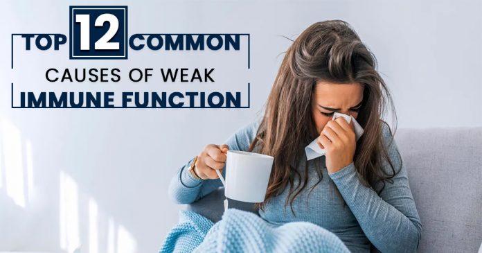 Weak Immune Function, Causes of Poor Immunity, Immune System, Genmedicare