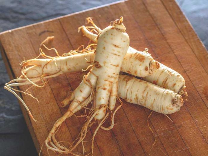Ginseng, Genmedicare, Healthcare