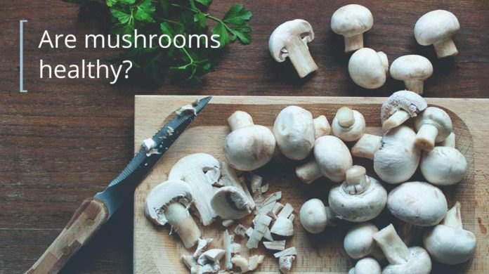 Buy Mushrooms Online Canada
