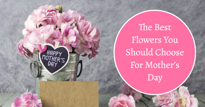 Most Suitable Flower Ideas For Mothers!